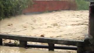 2012 08 02 好幾年沒有淹水ㄌ
