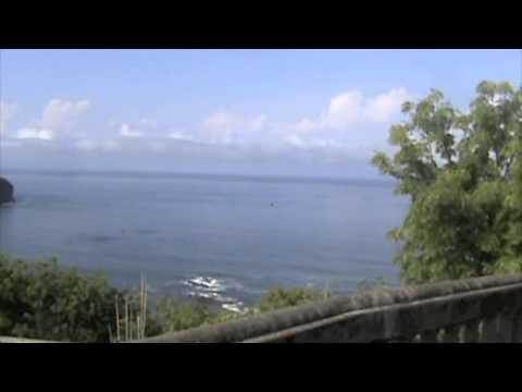 Pacific Marlin Lot With Stunning Vistas