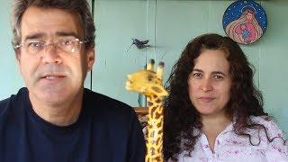 Resultado do sorteio 50K Girafa !!!