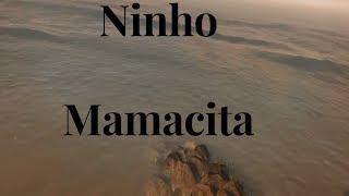 Ninho - Mamacita Version GTA 5