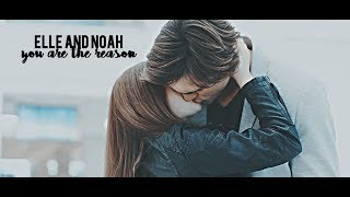 Elle and Noah | 'i'm crazy about you'