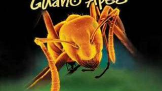 Guano Apes- Open Your Eyes W/lyrics