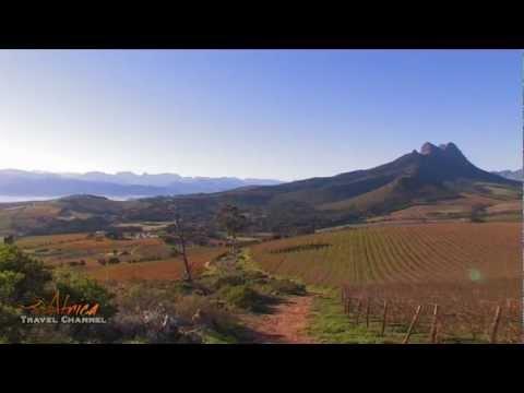 Le Bonheur Wine Estate Stellenbosch Cape Wine Lands South Africa – Africa Travel Channel