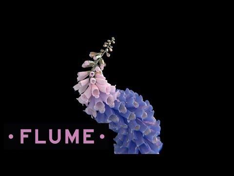 flume-free-flumeaus
