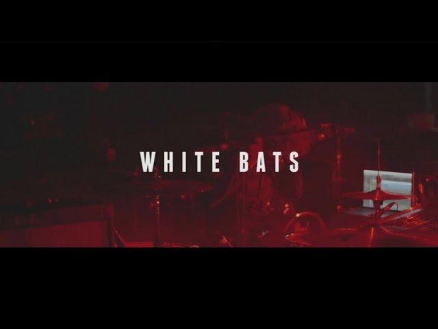 White Bats - Stockport (Joy Eslava)
