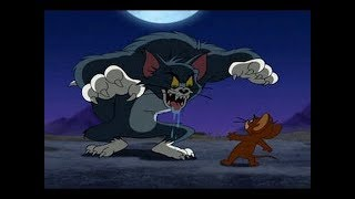 Tom And Jerry English Episodes   Jerry and the Lion    Kids  Cartoons 2017