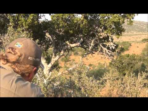 Hunting in South Africa with Mayogi Safaris #3