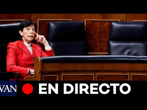 DIRECTO:  El Congreso vota la 'Ley Celaá' y el nuevo Pacto de Toledo