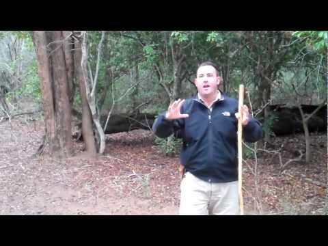 Game Reserve at Phinda – Ranger Talk
