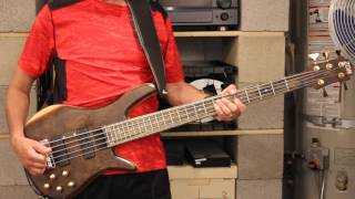 The Alan Parson's Project  - OneGoodReason (Bass Cover)