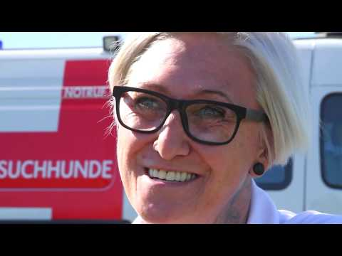 Bundeslandsieger Niederösterreich
