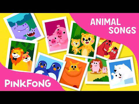Animal Families | Animal Songs | PINKFONG Songs for Children - YouTube