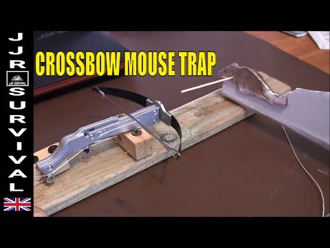 CROSSBOW MOUSE TRAP