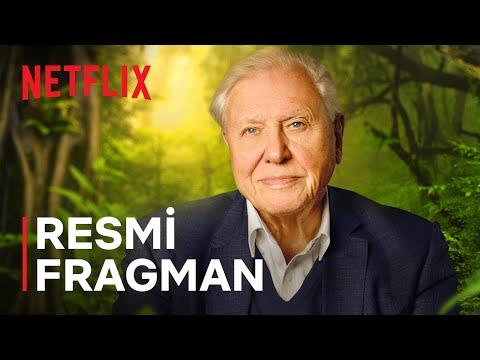 David Attenborough: Gezegenimizden Bir Yaşam   Resmi Fragman   Netflix