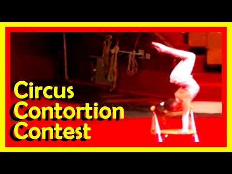 Circus And Cabaret Contortion