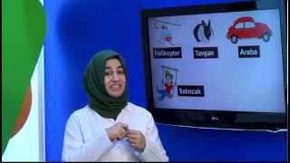 İlköğretim 4. Sınıf Fen ve Teknoloji Eğitim Seti Kuvvet Ve Hareket