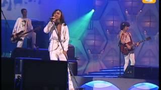 Babasónicos, Irresponsable, Festival de Viña 2005