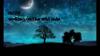 HB77-Walking on the wild side [OFFICIAL AUDIO]