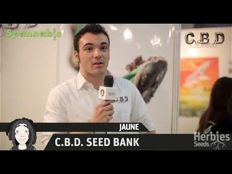 CBD Seeds @ Spannabis Barcelona 2013