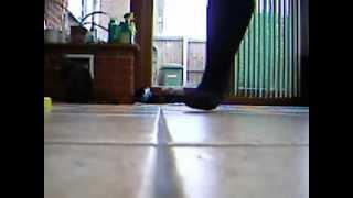 Flashdance - She's A Maniac (Music Video)