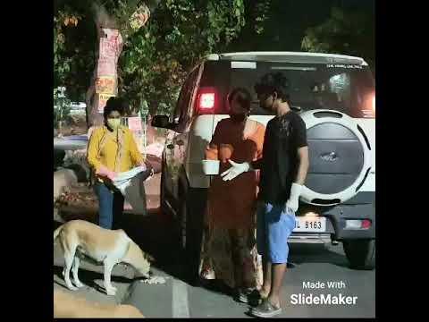 Dog feeding UP