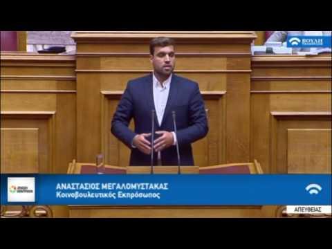 Α. Μεγαλομύστακας / Ολομέλεια, Βουλή / 25-5-2017