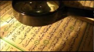 Hafiz Aziz Alili - Kur'an Strana 207 - Qur'an Page 207