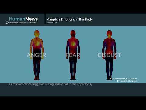 Emoções são o que sentimos no corpo