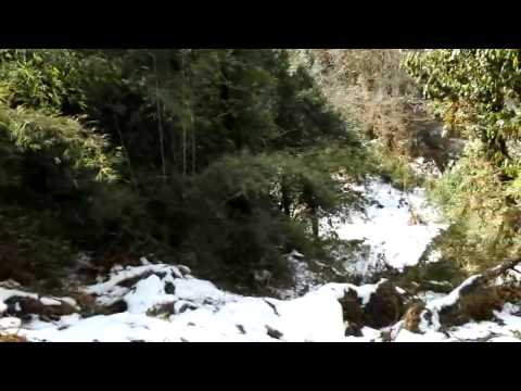 Annapurna Sanctuary: Tikhedhunga – Ghorepani (19-01-2012)