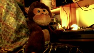 "Planet Monkey ""Crack The Nuts"" Official Music Video"