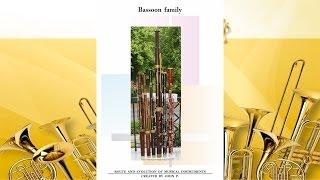 Bassoon family