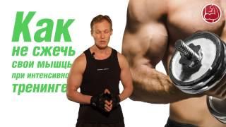 Как не сжечь свои мышцы при интенсивном тренинге?