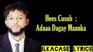 Hes Cusb Gulld Simba 2019