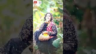 💝Sun Soniyo Sun Dildar 💝|| love status Female💝