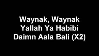 Adam Saleh - Waynak ft. Faydee lyric