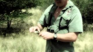 Gunny Safari - Free Range with Lew Harris Safaris