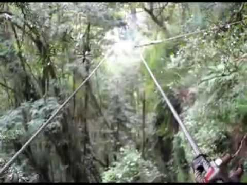 Drakensberg Canopy Tour, South Africa