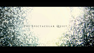 Lights & Motion - The Spectacular Quiet