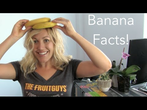 The Mind Blowing Banana Facts - The FruitGuys