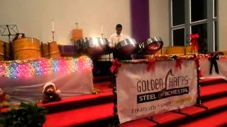 Zaahy Ali Live At Golden Harps Steel orchestra Christmas Concert