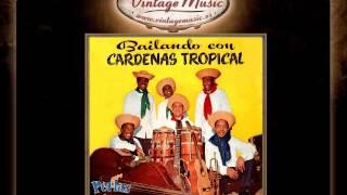 Hermenegildo Cárdenas -- Música Africana Son Afro
