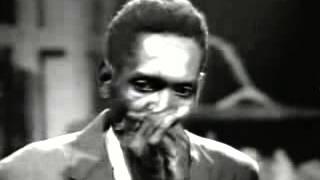 Big Walter Horton - Shakeys Blues 1965