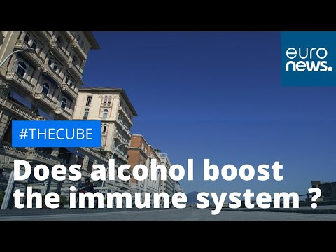 Italian Health Ministry debunks alcohol as a way to 'boost immune system' photo