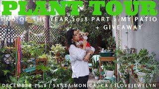 PLANT TOUR: Santa Monica Collection Part 2 | December 2018 | ILOVEJEWELYN