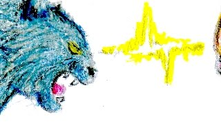 喧嘩する猫のうなり声(録音 効果音) Cats Snarling for Fight Recording Sound Effect