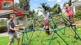 Mystery Eggs Found Building Giant Dome Monkey Bars Kids Climbing Toy!