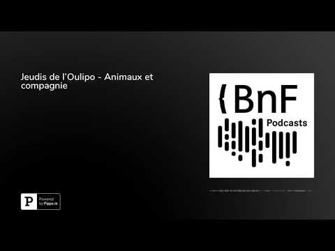 Vidéo de  Oulipo