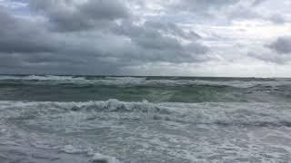 Anna Maria Island 🌴