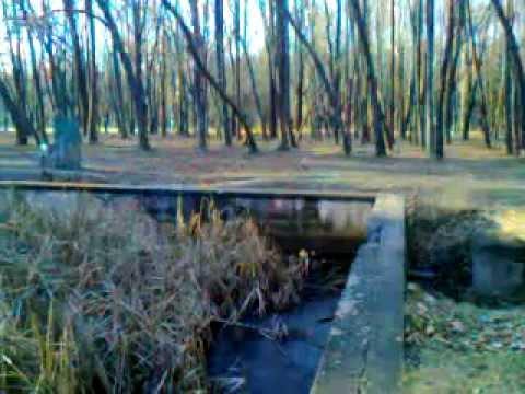 (3) Adolf Hitler`s Headquarters Werwolf, Water Pool, Ruins (Vinnytsya, Ukraine) www.sergoyalta.at.ua