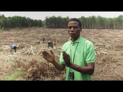 Chapitre 4: Republique Democratique du Congo (REDD+ et l'avenir des forêts africaines)